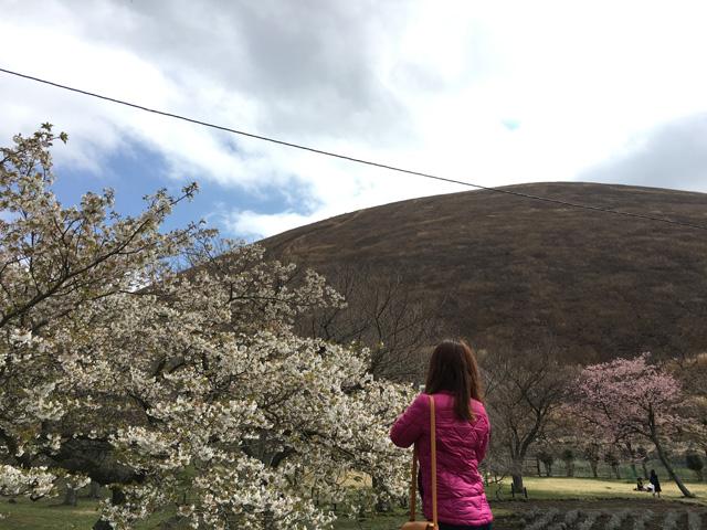 さくらの里 桜の撮影