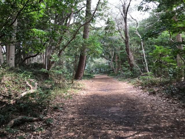 城ヶ崎遊歩道