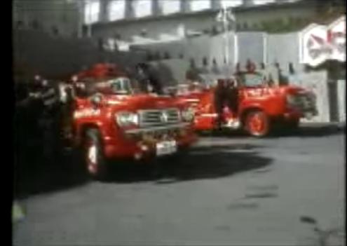 ハトヤの消防隊