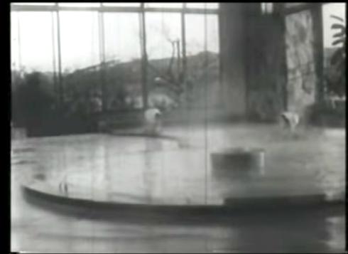 ハトヤCMの温泉