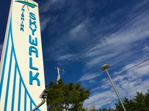 日本一の吊橋『三島スカイウォーク』を満喫しつくす11コのポイント!