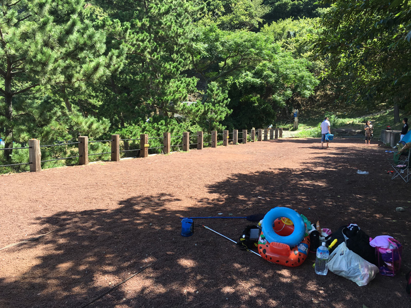 伊豆黄金崎で楽しいキャンプ テントサイトA