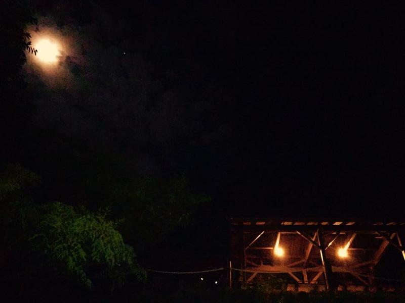 伊豆黄金崎で楽しいキャンプ