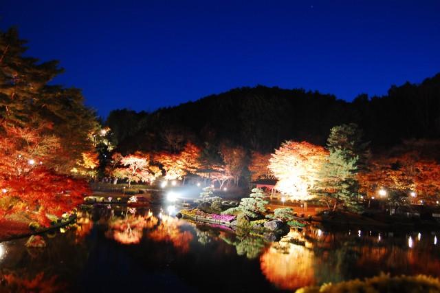 修善寺虹の郷:紅葉ライトアップ