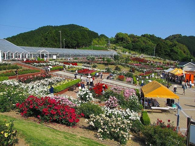 島田ばらの丘公園