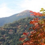 接岨峡温泉の紅葉