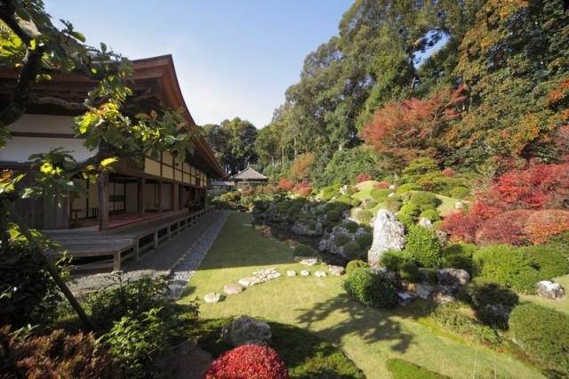 龍潭寺の庭園と紅葉