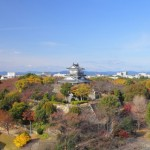 浜松城公園の紅葉