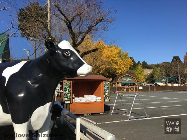 まかいの牧場:牛のお出迎え