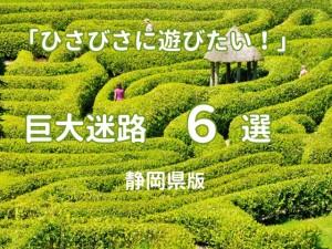 懐かしい巨大迷路でどうしても遊びたいっ!静岡県内の巨大迷路6選