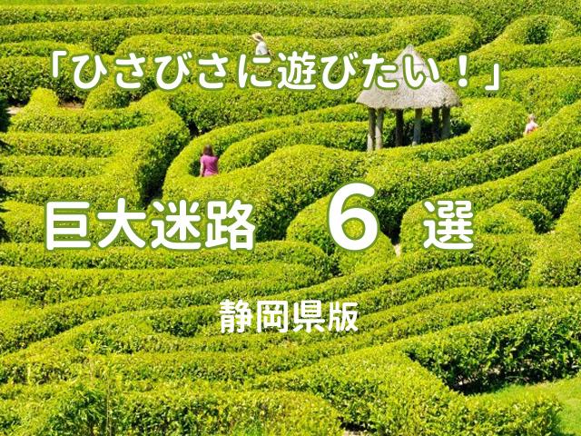 静岡県内の巨大迷路