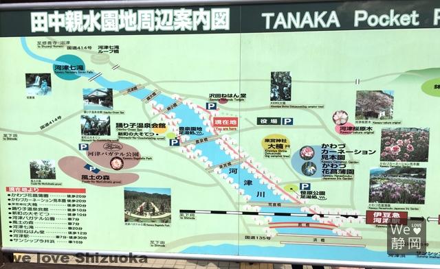 河津桜並木案内図