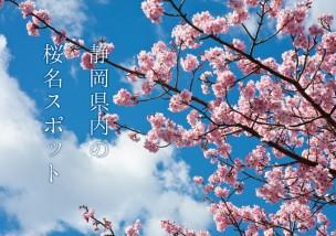 静岡県内の桜名スポット