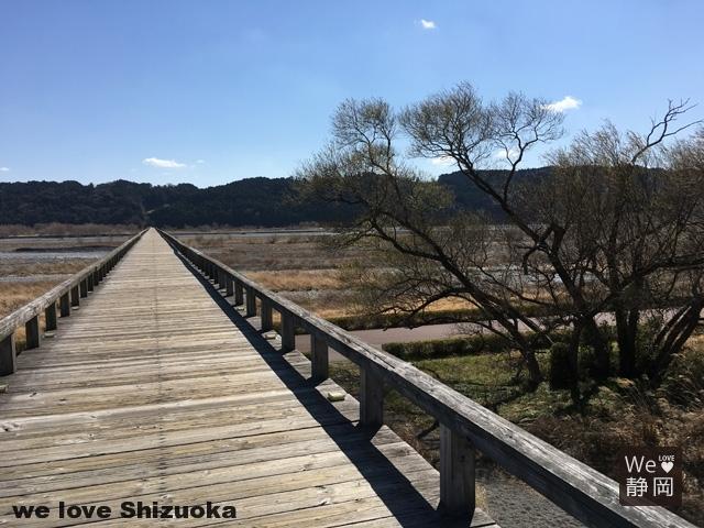 牧之原台地と大井川の風景と蓬莱橋