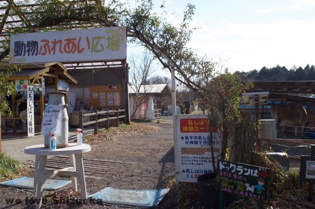 富士ミルクランドのふれあい広場