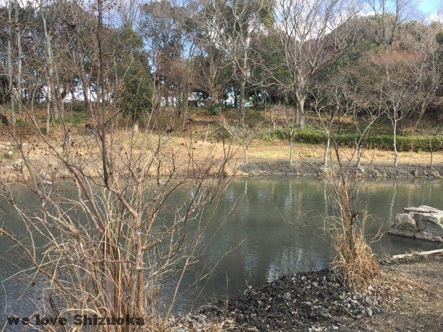 磐田市竜洋昆虫自然観察公園