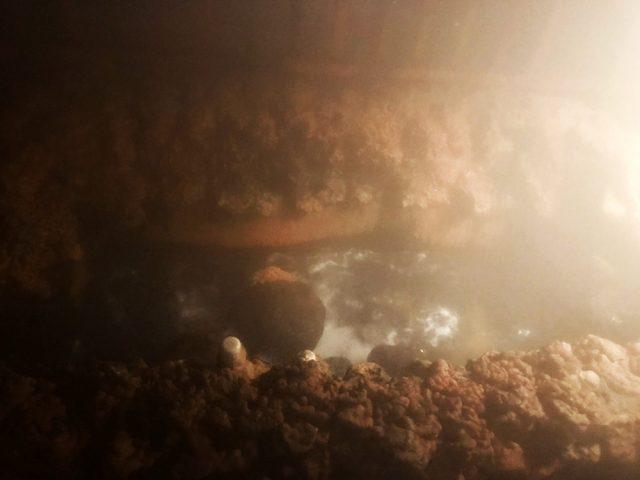 伊豆山温泉 走り湯 洞窟