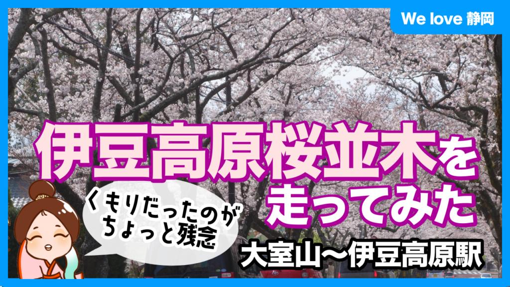 伊豆高原桜並木を走ってみた:動画