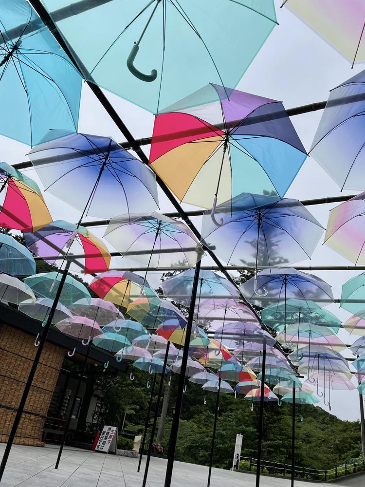 法多山の傘紫陽花:袋井市観光スポット