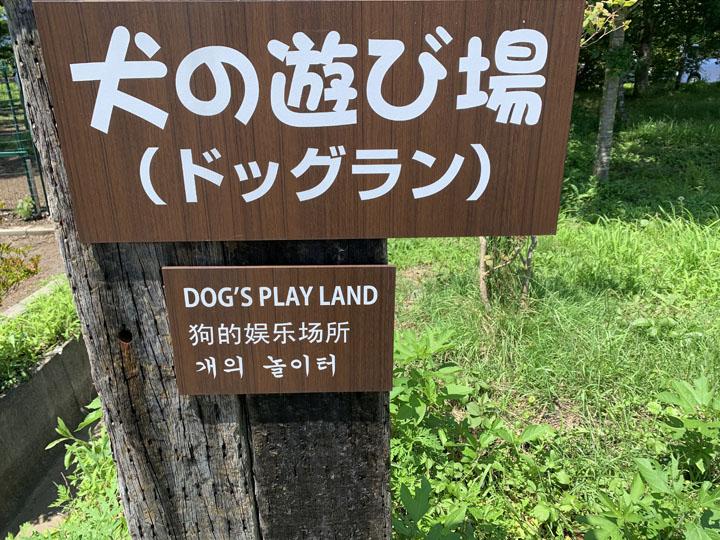 あさぎりフードパークオートキャンプ場:ドッグラン