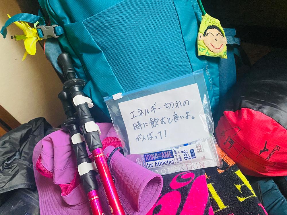 富士登山息子から